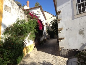 The village of Obidos.